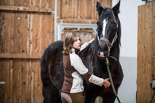 Claudia Schmidt Pferde-Osteopathie-2